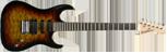 Washburn X10 QVS