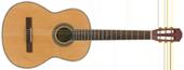 Rosario MCS-6562