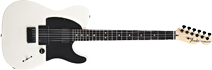 Fender Telecaster Jim Root