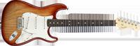 Fender American Standard Stratocaster®, Rosewood Fretboard, Sienna Sunburst