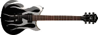 Washburn WI 63 SF