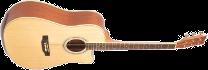 Morrison MBD100 C
